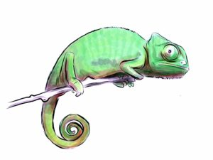 Be Chameleon-like Facilitator